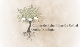 Clínica de Rehabilitación Spinal Santo Domingo