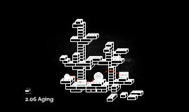 2.06 Aging