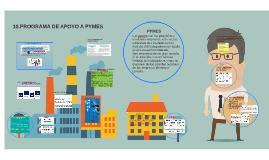 10.PROGRAMA DE APOYO A PYMES