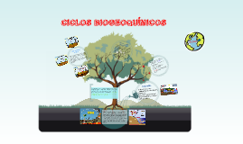 Copy of CICLOS BIOGEOQUÍMICOS