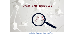 Organic Molecules Lab