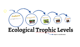 Ecological Trophic Levels