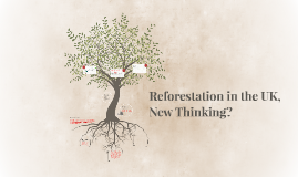 Copy of Copy of Reforestation in the UK, New Thinking?