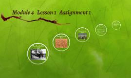 Module 4   Lesson 1   Assignment 1