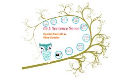 Ch.1 Sentence Sense