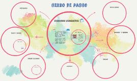 Copy of cerro de pasco
