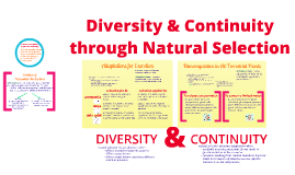R BI 1: Diversity & Continuity in Life