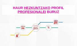HAUR HEZKUNTZAKO PROFIL PROFESIONALEI BURUZ
