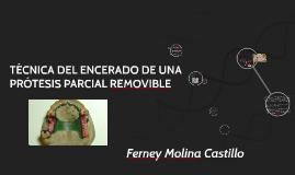 Copy of TÉCNICA DEL ENCERADO DE UNA PRÓTESIS PARCIAL REMOVIBLE