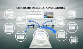 SANCOCHO DE MULATA PASEADORA