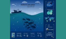 CSR Review on Marine Fisheries