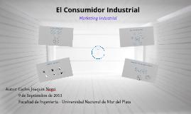 Comportamiento de Compra Industrial - Joaquin Negri