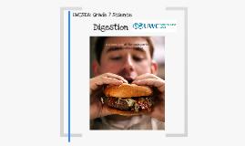 UWCSEA Digestive System