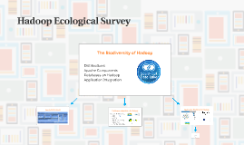 Hadoop Ecological Survey