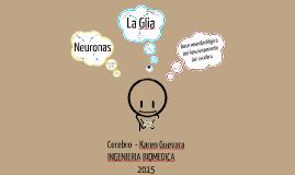 ¿Cuál es la base neurobiológica del funcionamiento del cerebro?
