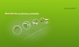 Biomoléculas en plantas y animales