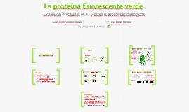 La proteína fluorescente verde.