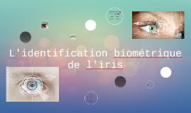 L'identificaiton biométrique de l'iris