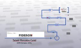 FIDESON