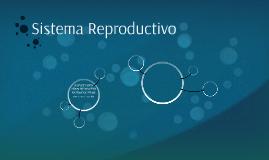 Sistema Reproductivo