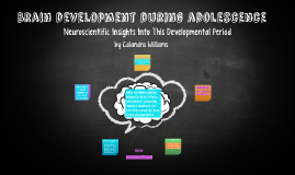 Brain development during adolescence