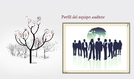 Copy of Perfil del equipo auditor