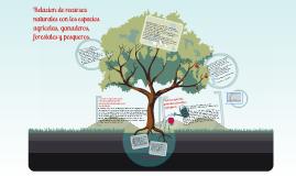 Copy of Relaciones de recursos naturales con los espacios agricolas, ganaderos, forestales y pesqueros