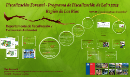 Evaluación Programa Fiscalizació de Leña
