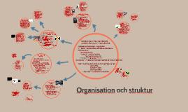 Organisation och struktur