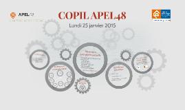 COPIL APEL48