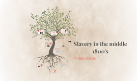 Slavery in the middle 1800's