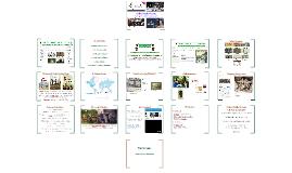 Online Public History