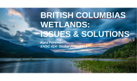 BRITISH COLUMBIAS WETLANDS: