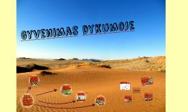 Gyvenimas dykumoje
