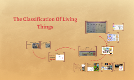 Copy of The Classification Of Living Things