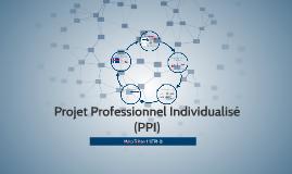 Projet Professionel Individualisé (PPI)