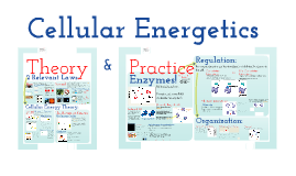 Copy of Copy of AP Bio- Metabolism 1:  Cellular Energetics