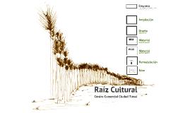 Raiz Cultural, Remodelación de fachadas Centro Comercial Ciudad Tunal