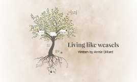 living like weasels by louie naser on prezi