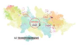 Le transhumanisme (lito c'est lui)