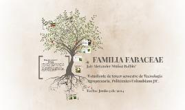 FAMILIA FABACEAE