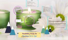 "Copy of Feasibility study for ""Pasithea Inn & Spa"""