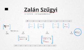 Timeline Prezumé by Zalán Szűgyi