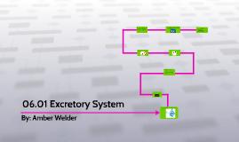 06.01 Excretory System .