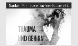 Seminarkurs: Trauma und Gehirn