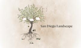 San Diego Landscape