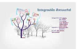 Copy of Integración Sensorial