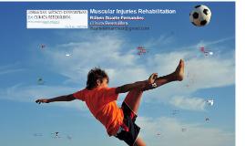 Reabilitação das Lesões Musculares