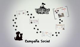 Campaña Social para Territorio de Zaguates