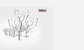 TRIMIJOLA